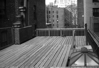 How to redesign your New York rooftop space
