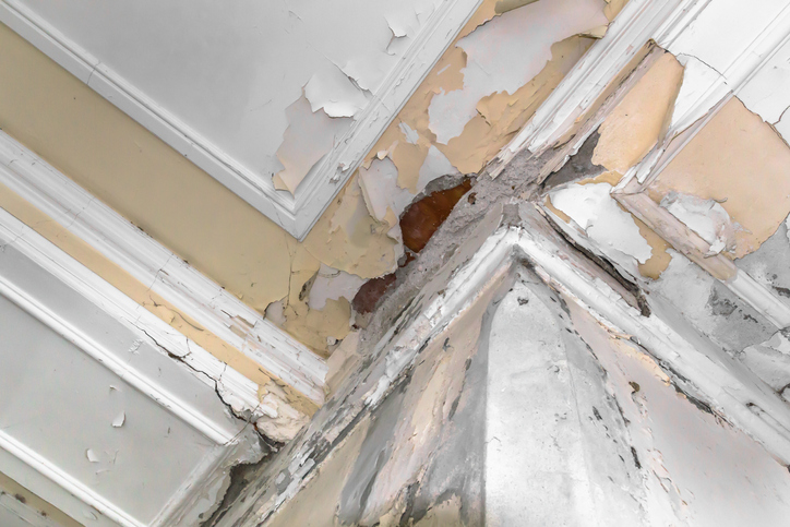 Ceiling and walls in a NYC apartment damage by a flood